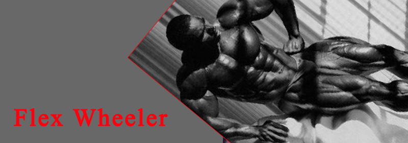 flex-wheeler-banner