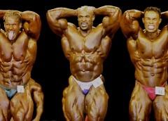 Mr olympia 2001