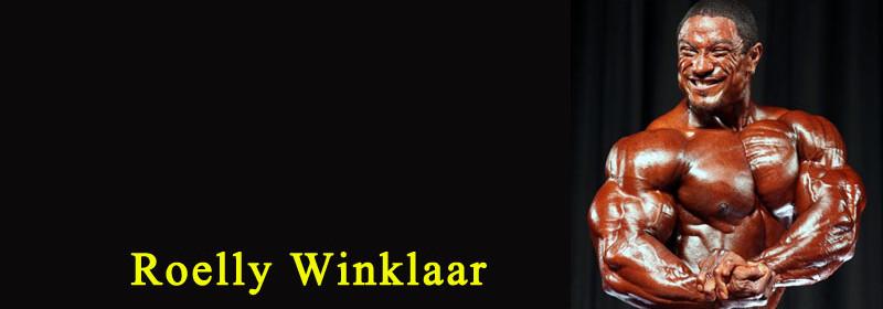 roelly-winklaar-banner