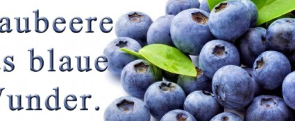 Blaubeere das blaue Wunder