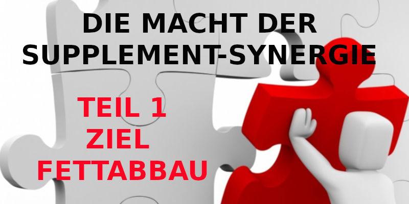 DIE MACHT DER SUPPLEMENT-SYNERGIE - TEIL 1