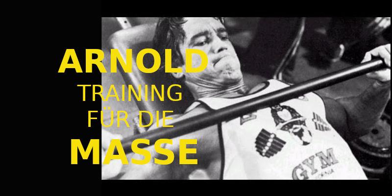 arnold training für die masse banner