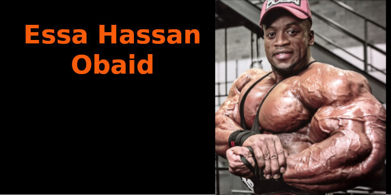Essa Hassan Obaid banner
