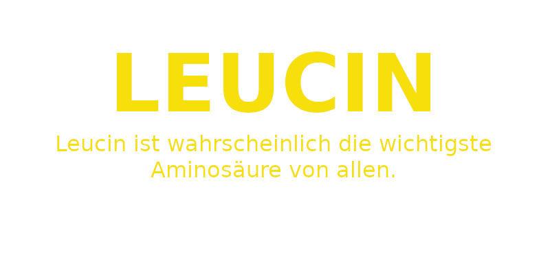 Leucin