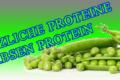 Erbsen-Protein-Banner